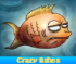 Crazy fishes. Find objects