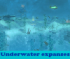 Underwater expanses