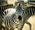 Zebra Jigsaw